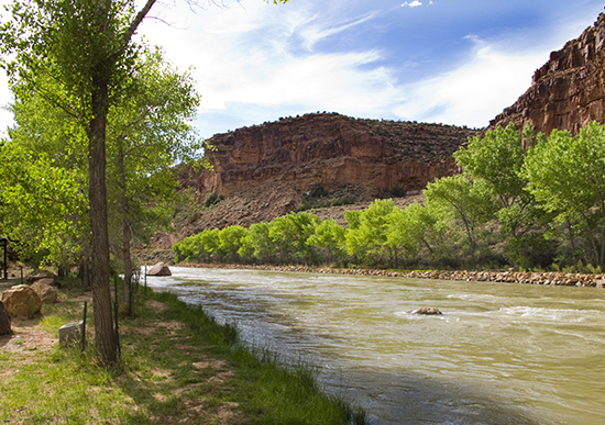 Photo of the Rio Chama Below the Abiquiu Lake Dam