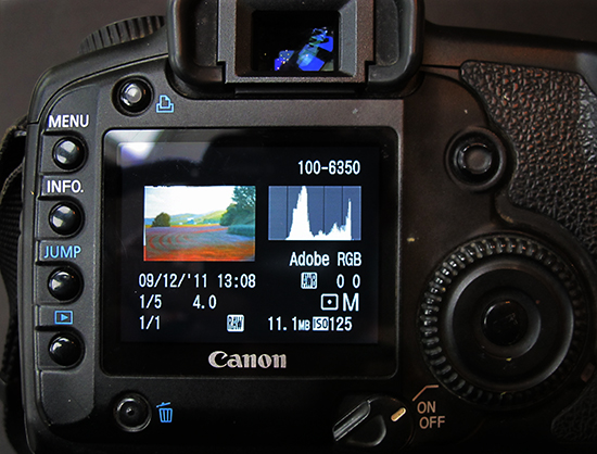 Photo of Camera Back with Histogram