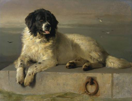 Oil Painting by Landseer