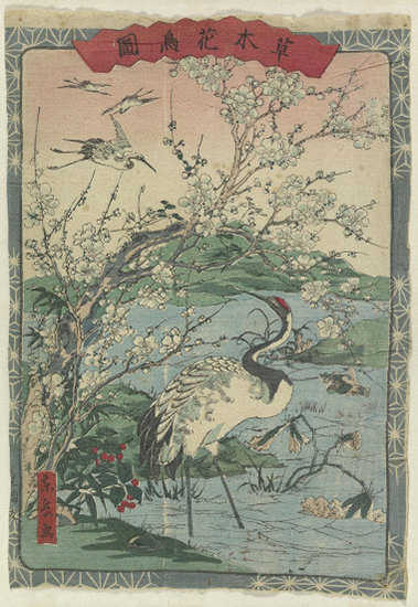 Cranes and Cherry Blossoms from the series Illustrations of Plants Trees Flowers and Birds by Togaku