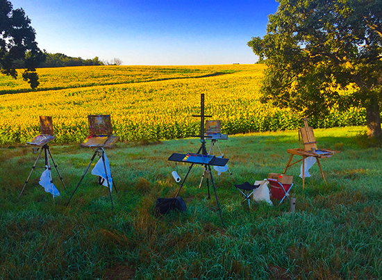 Easels Ready to Paint Sunflower Field