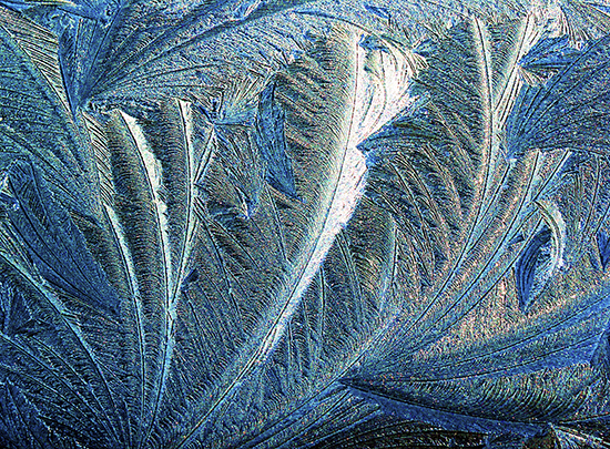 Photograph of Frost Patterns