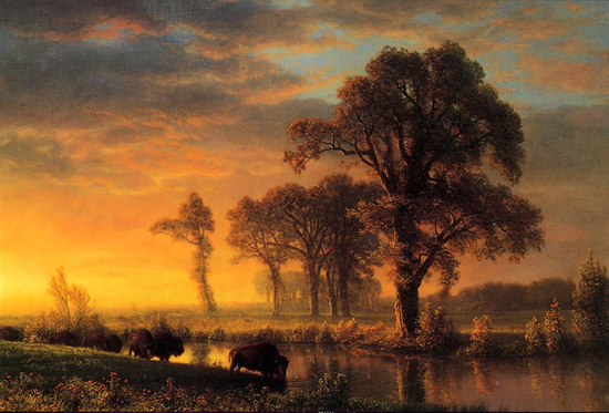 Western Kansas by Albert Bierstadt