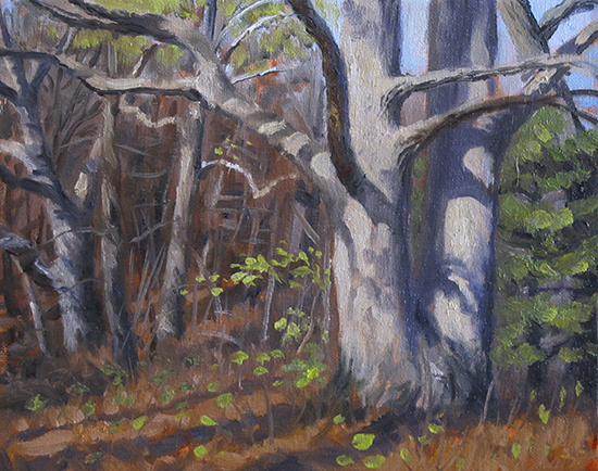 White Oak study, oil by John Hulsey