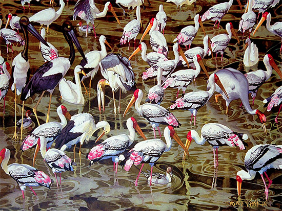 Morning in Bharatpur by David Rankin