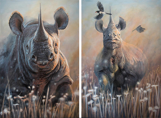 "Disappearing 1 and Disappearing 2, Black Rhinoceros, Acrylic, 25 x 24"" each, © Chamindra de Silva Abeyewickreme"