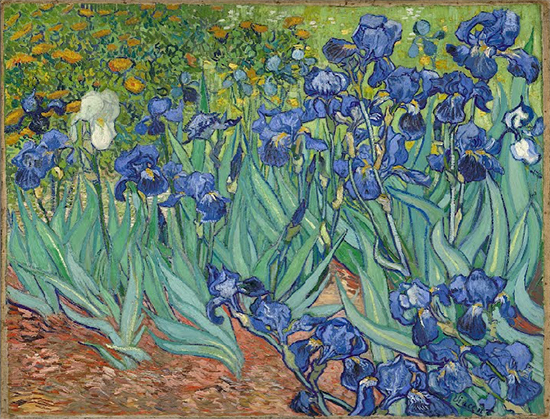 The Irises, 1889, Vincent van Gogh