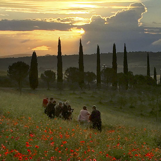 Students Photographing in the Poppy Fields of Tuscany
