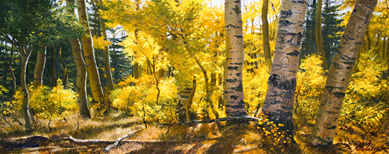 finished oil painting of Aspen trees, October Impression, by John Hulsey