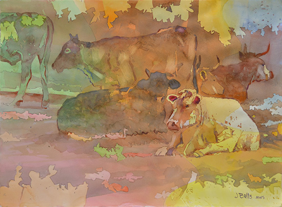 watercolor of cows, by Judi Betts